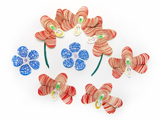 Esmeralda-cathcartii-Flowers-Colleen-Rochette